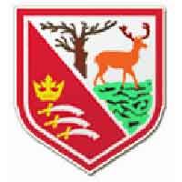 Hayes Football Club